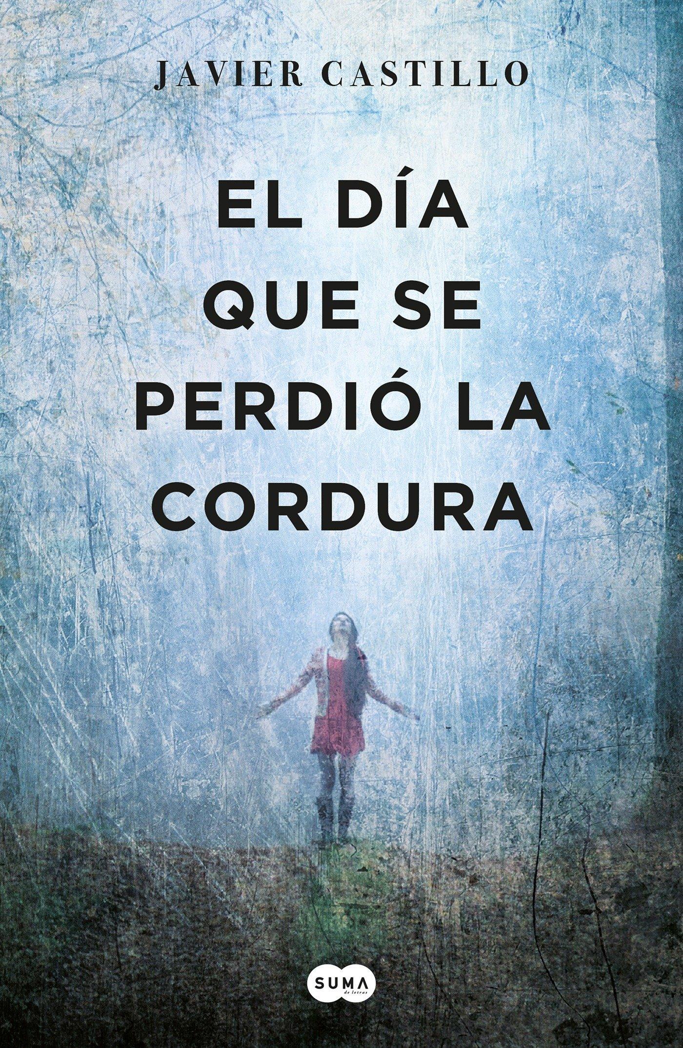 El día que se perdió la cordura (Tinta negra): Amazon.es: Castillo ...
