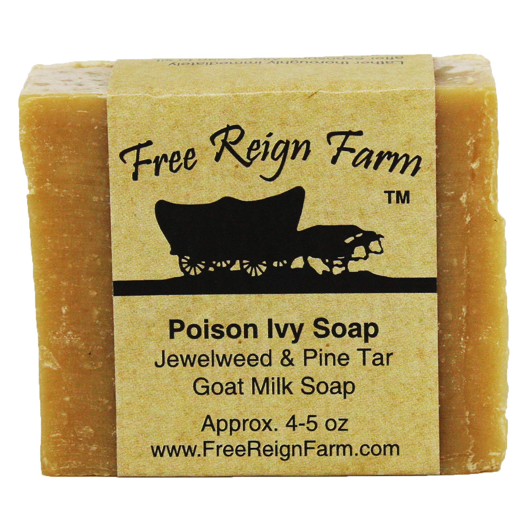 Poison Ivy Soap Infused with Jewelweed Extract, Made with All-Natural Goat's Milk for Soothing Poison Ivy Treatment (2) by RWB Enterprises