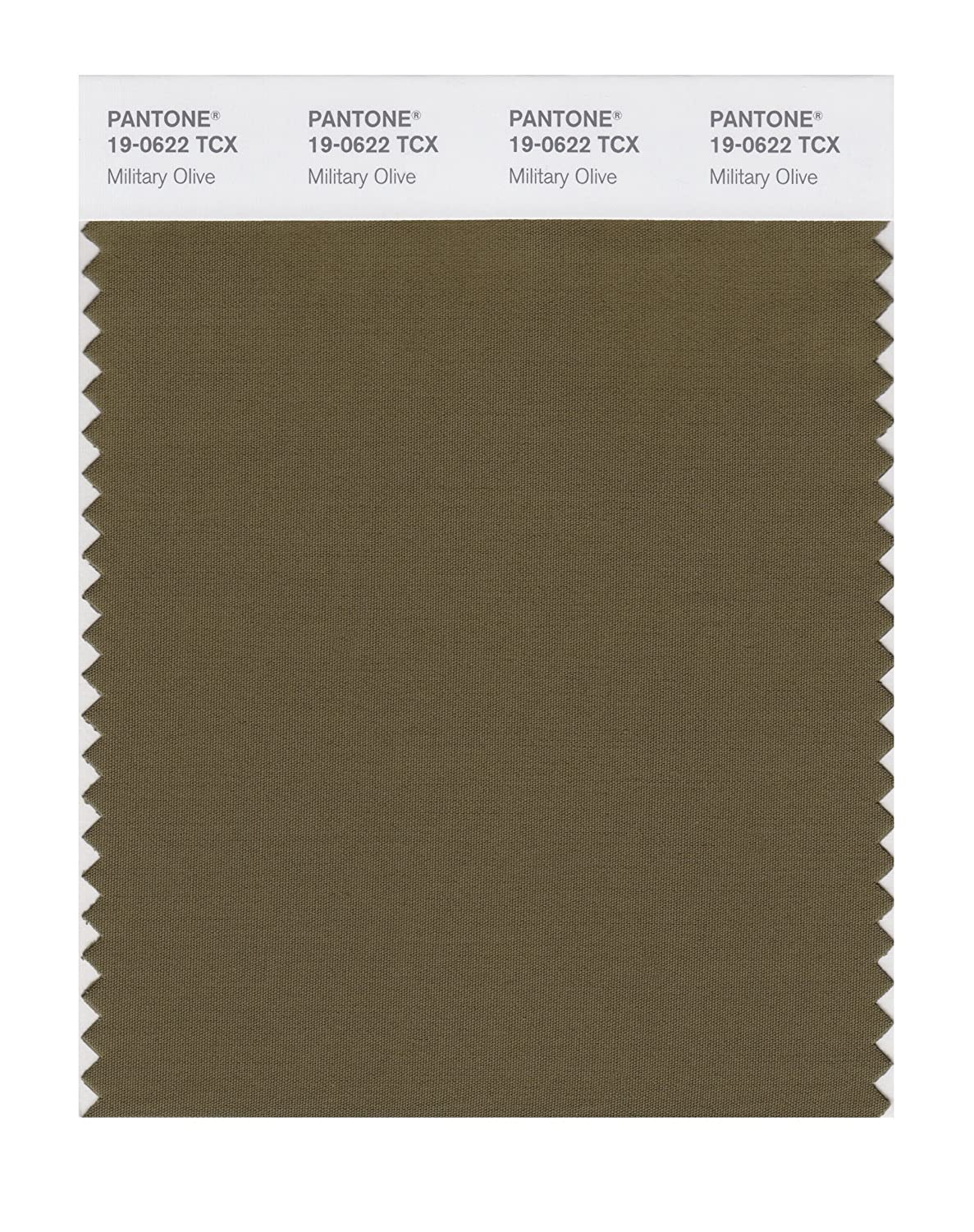 PANTONE SMART 19-0622X Color Swatch Card, Military Olive - Wall ...