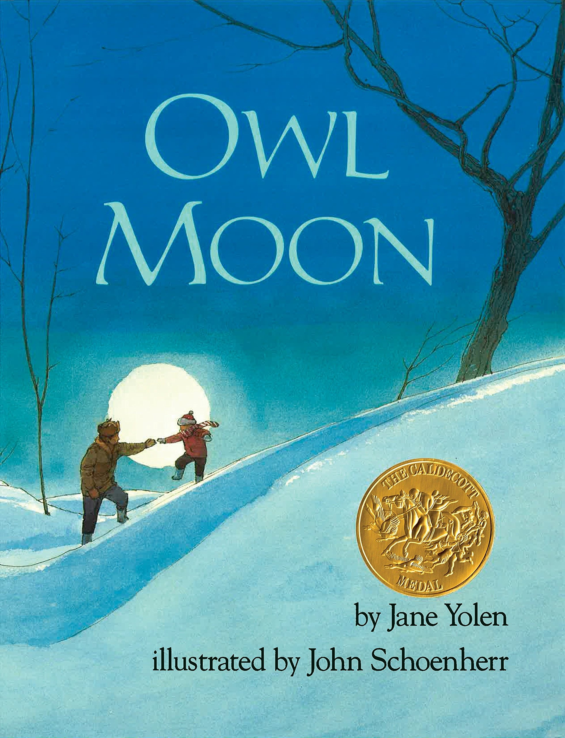Image result for owl moon book cover