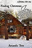 Finding Christmas Joy: A Christmas Short Story