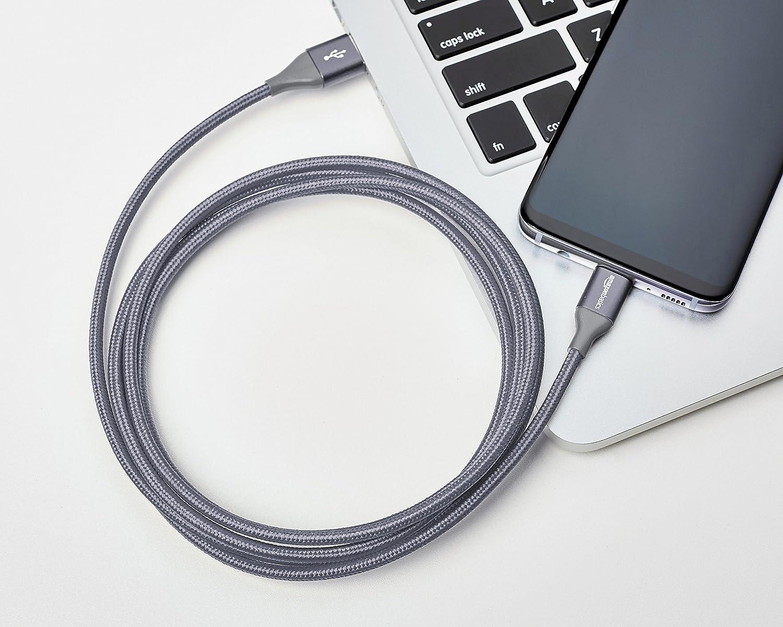 Cable macho de USB 2.0 C a USB 2.0 A Plateado 0,9 m de nailon con trenzado doble Basics