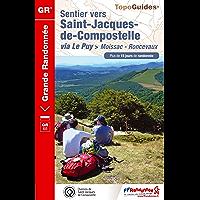 Sentier vers Saint-Jacques-de-Compostelle : Moissac-Roncevaux: Topo-guide de Grande Randonnée - Edition 2014 (TopoGuides GR t. 653) (French Edition)