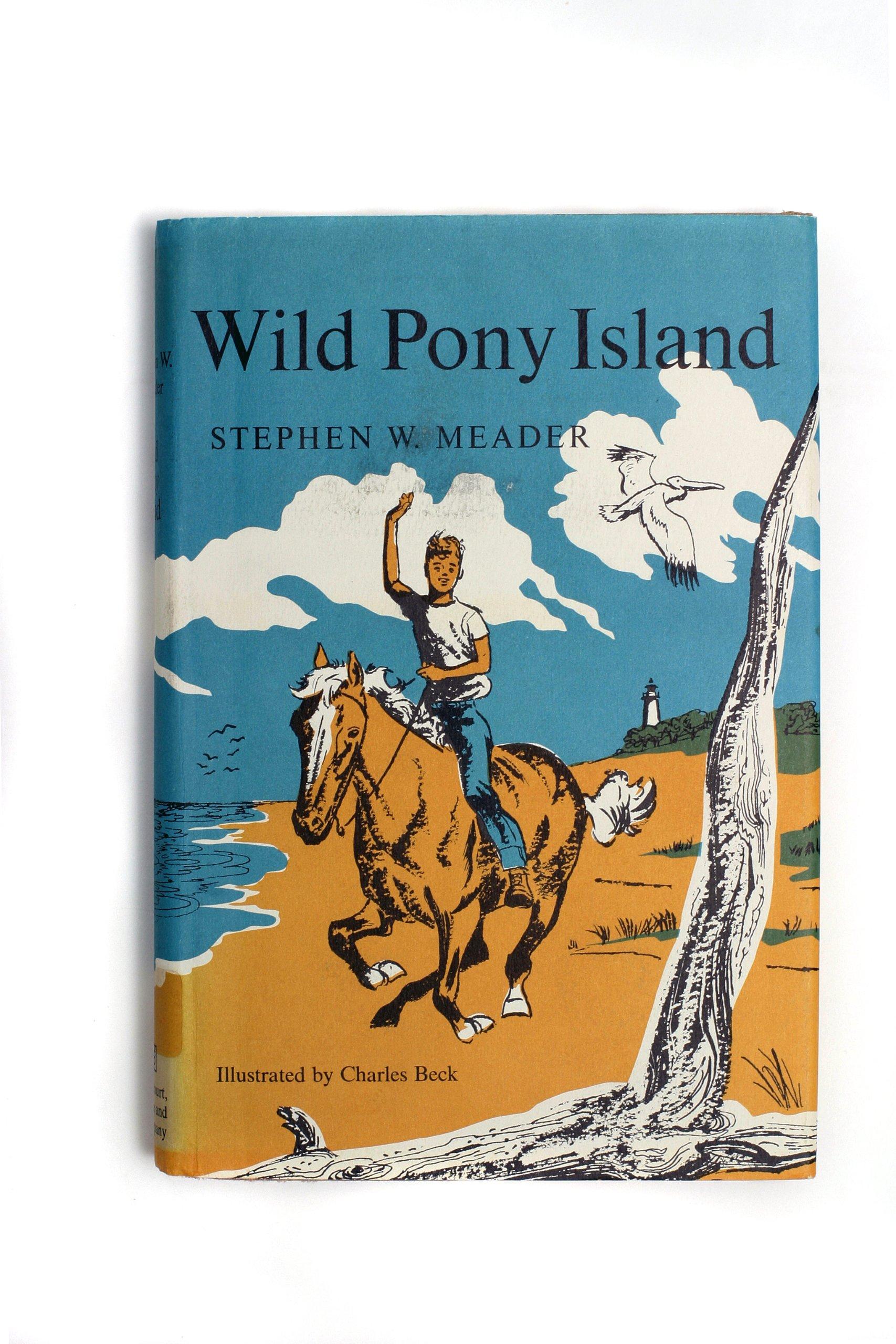 Wild Pony Island: Stephen Meader: 9781931177443: Amazon.com: Books