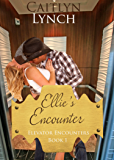 Ellie's Encounter: Elevator Encounters 1