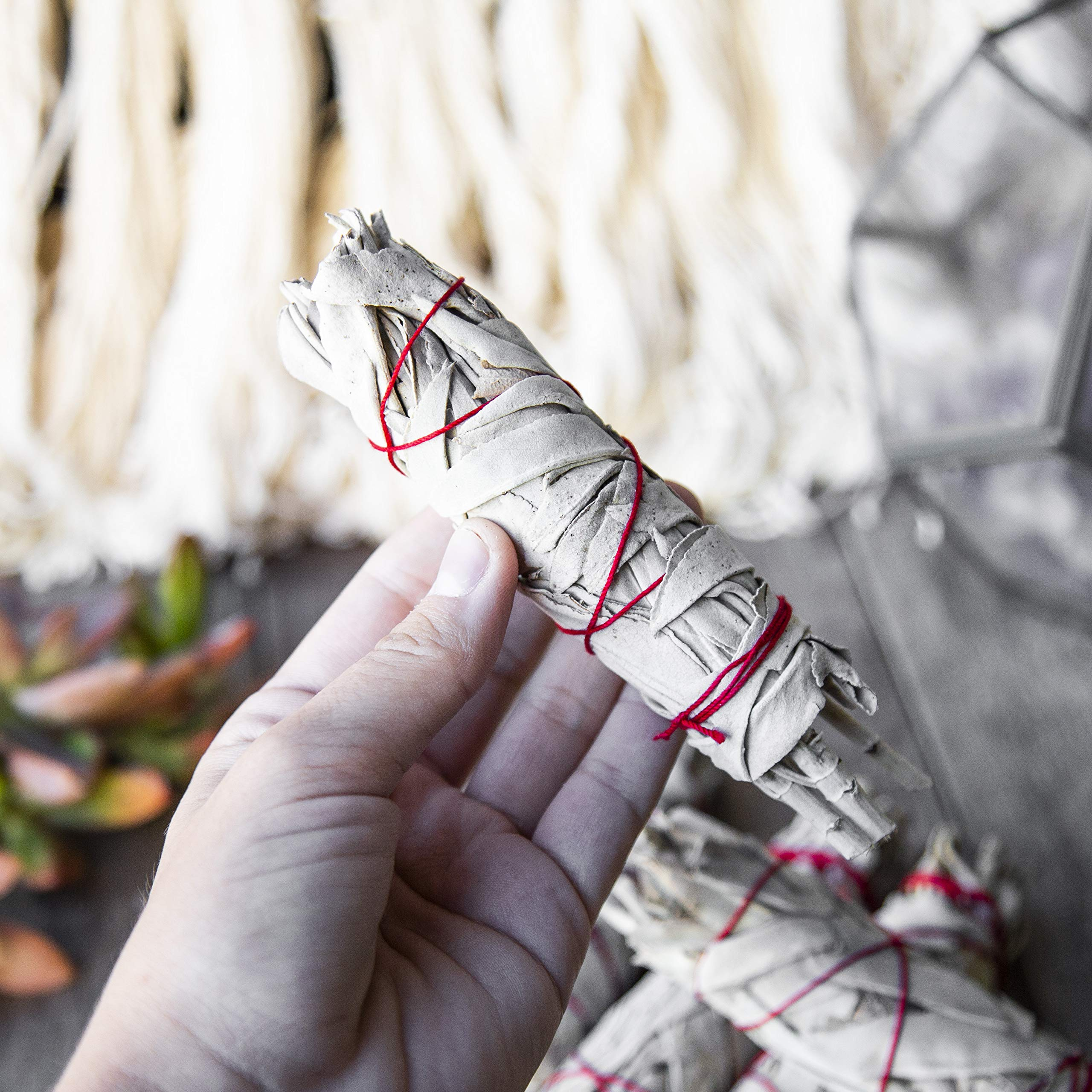 Beverly Oaks California White Sage 4'' Smudge Stick, Perfect for Smudging, Meditation, Protection and Incense, 20 Pack by Beverly Oaks (Image #4)