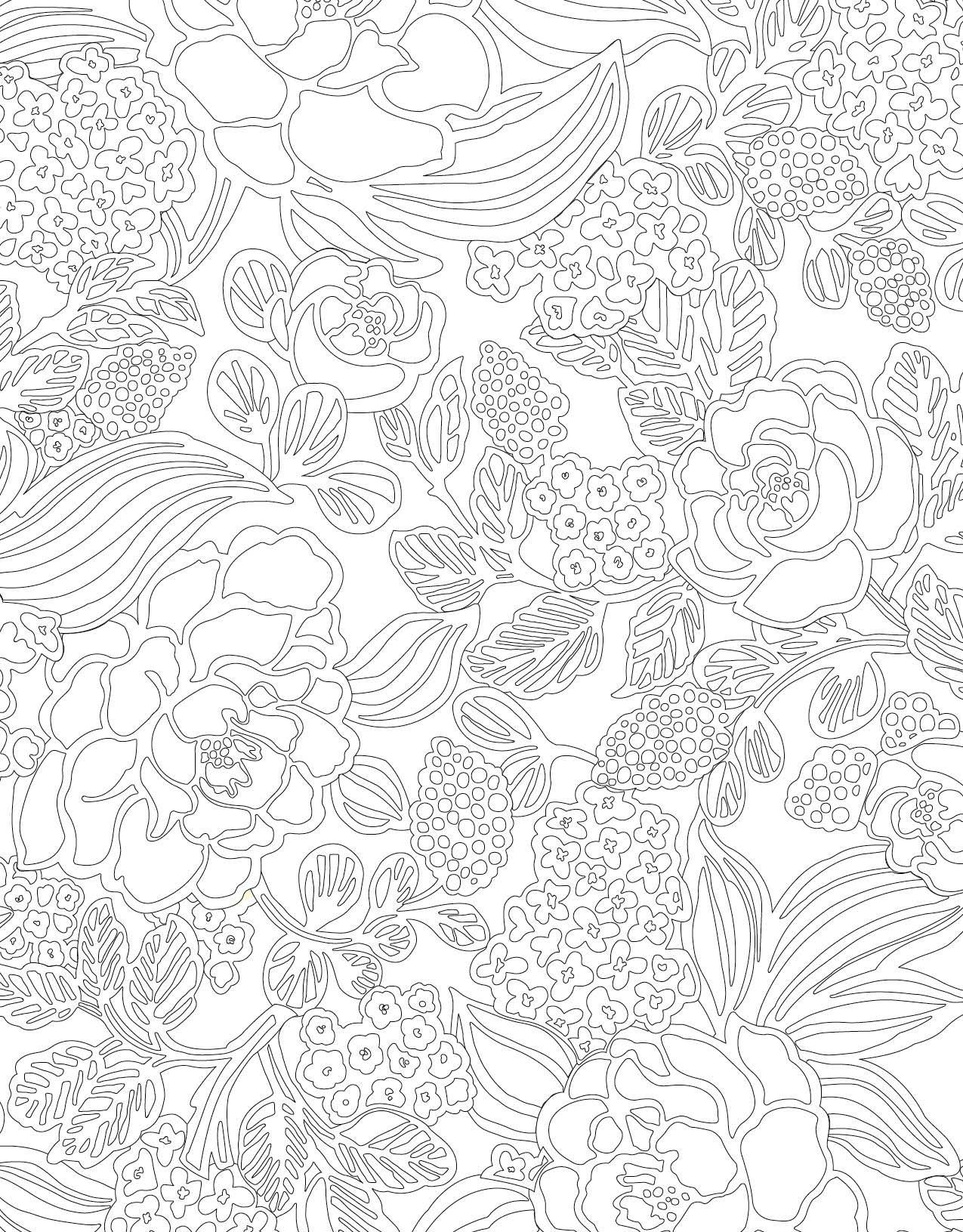 Amazon Vera Bradley Floral Patterns Coloring Book Design
