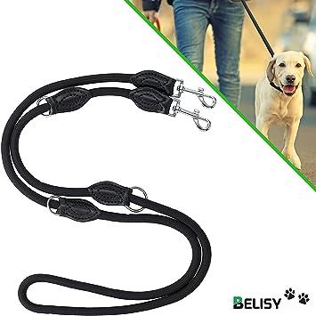 BELISY Correa Perro – Ajustable en 3 Niveles – Perros Grandes y Medianos – Longitud 2m - Correa Entrenamiento para Perros de Alta Calidad – Negro