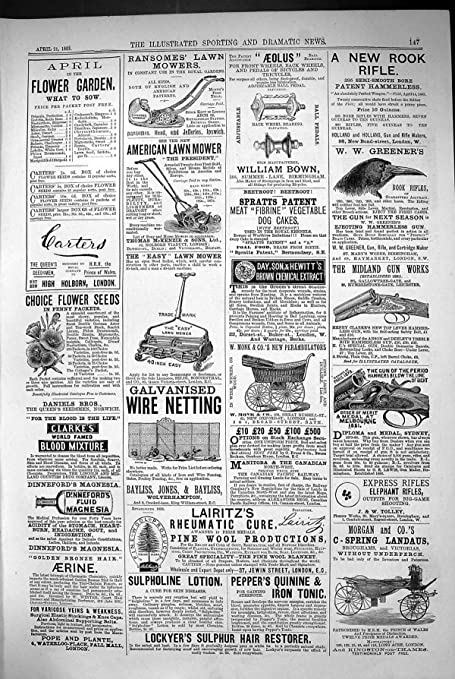 Impresión Antigua del Arma 1883 de Midland de los Landós de ...