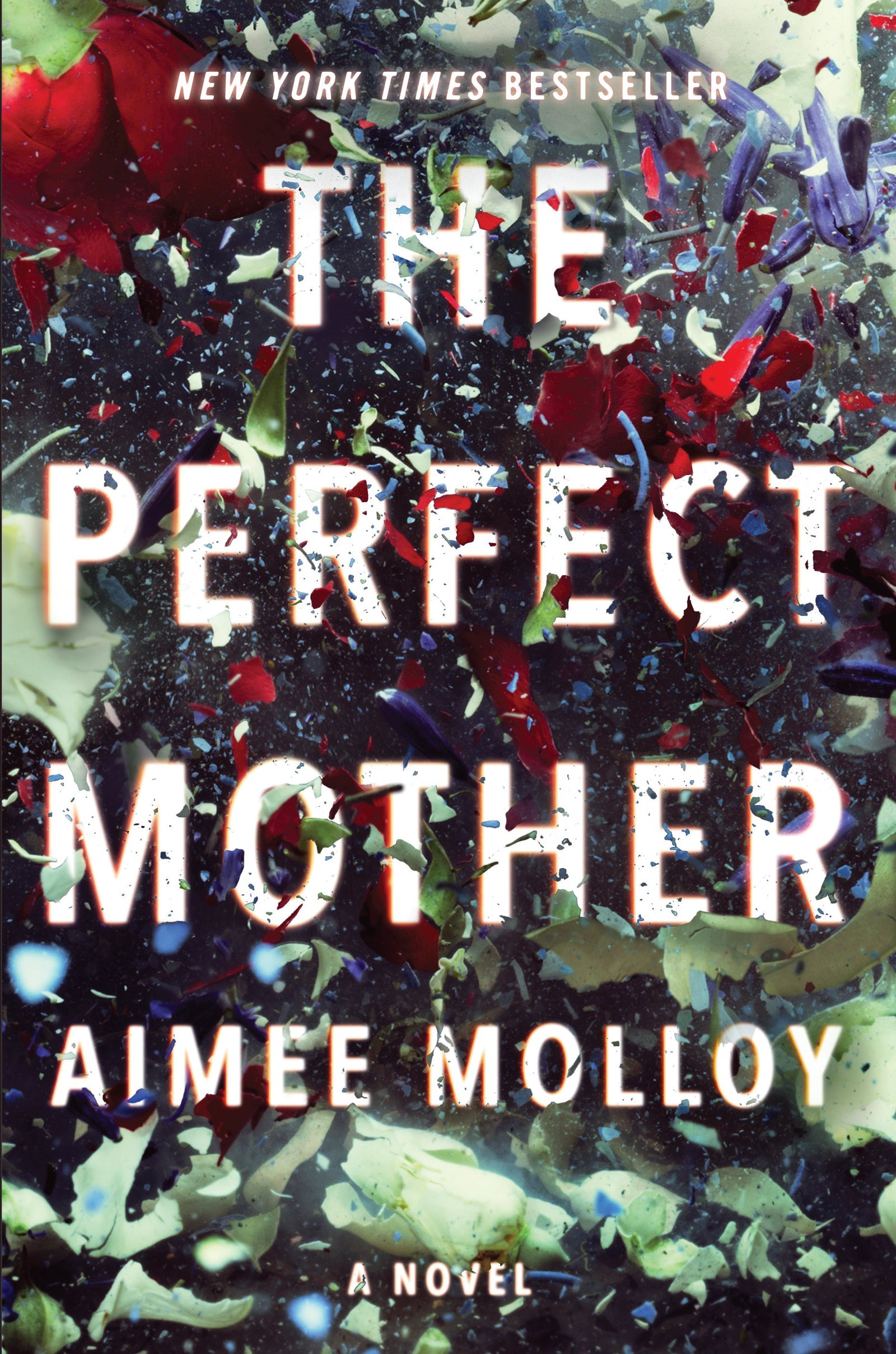 Image result for the perfect mother