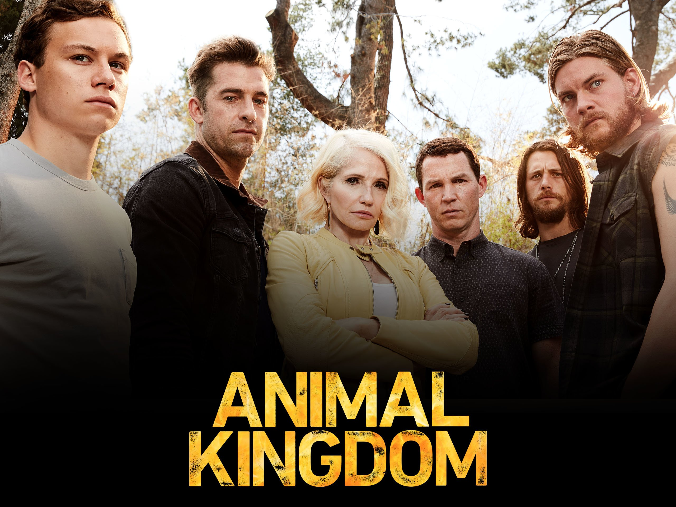 Image of: Smurf Amazoncom Amazoncom Watch Animal Kingdom Season Prime Video