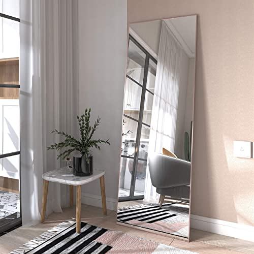 Honyee Full Length Mirror