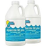 In The Swim Pool Algaecide 60 Plus - 2 x 1/2 Gallons