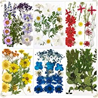 Deals on 114PCS Dried Flowers for Resin
