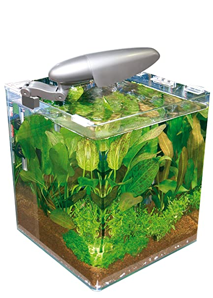 Acuario Wave caja cubo 25 25 x 25 x 30h 16 Lt con filtro y lámpara ...