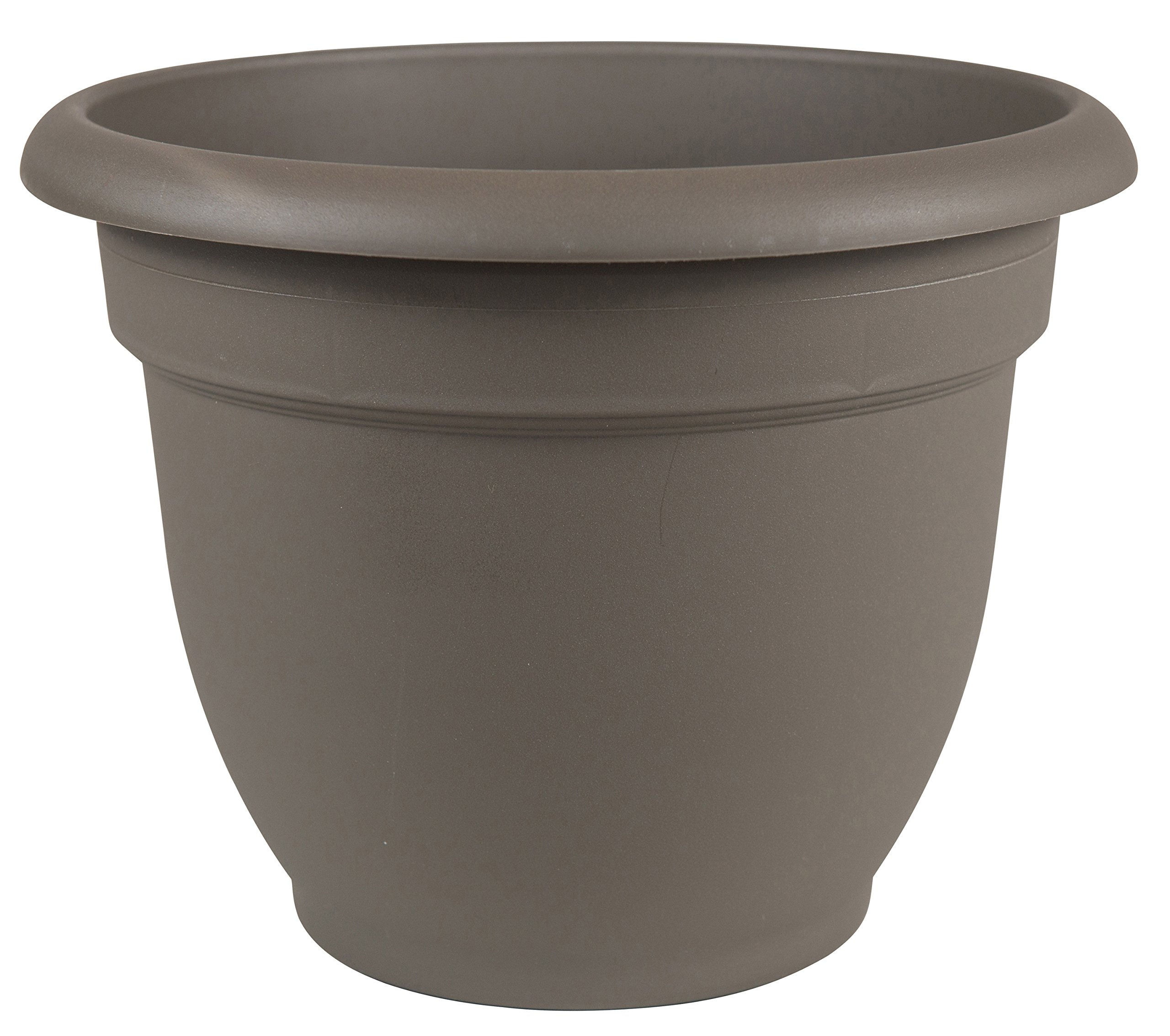 Bloem AP1260 Ariana Self Watering Planter, 12'', Peppercorn
