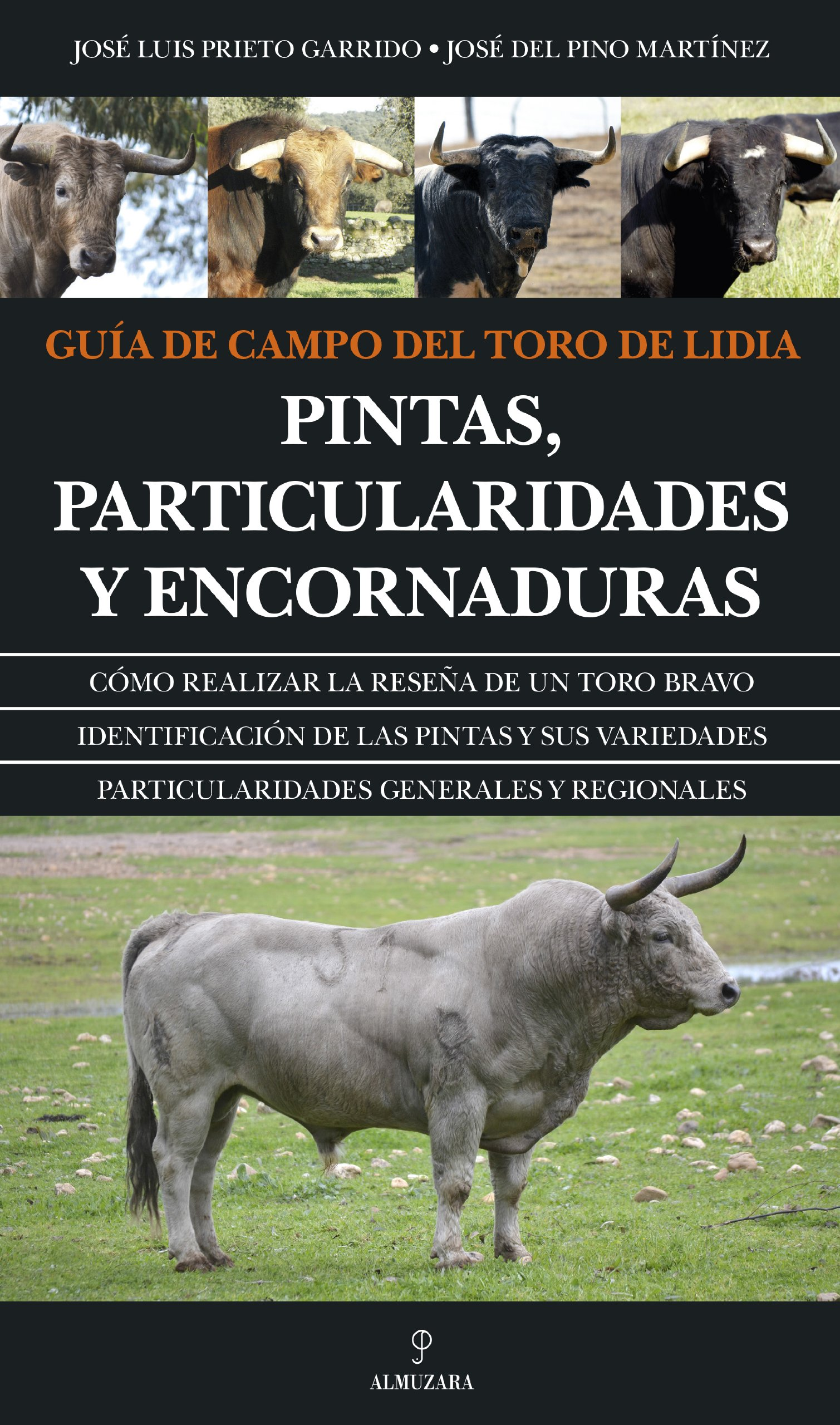 Guía De Campo Del Toro De Lidia Pintas Particularidades Y Encornaduras Taurología Spanish Edition Prieto Garrido José Luis Del Pino Martínez José 9788415828013 Books
