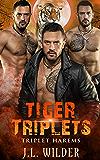 Tiger Triplets (Triplet Harems Book 5)