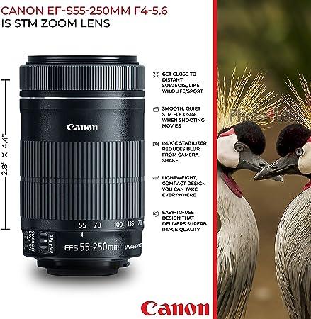 Canon Canon T7i product image 9