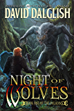 Night of Wolves (The Paladins Book 1)