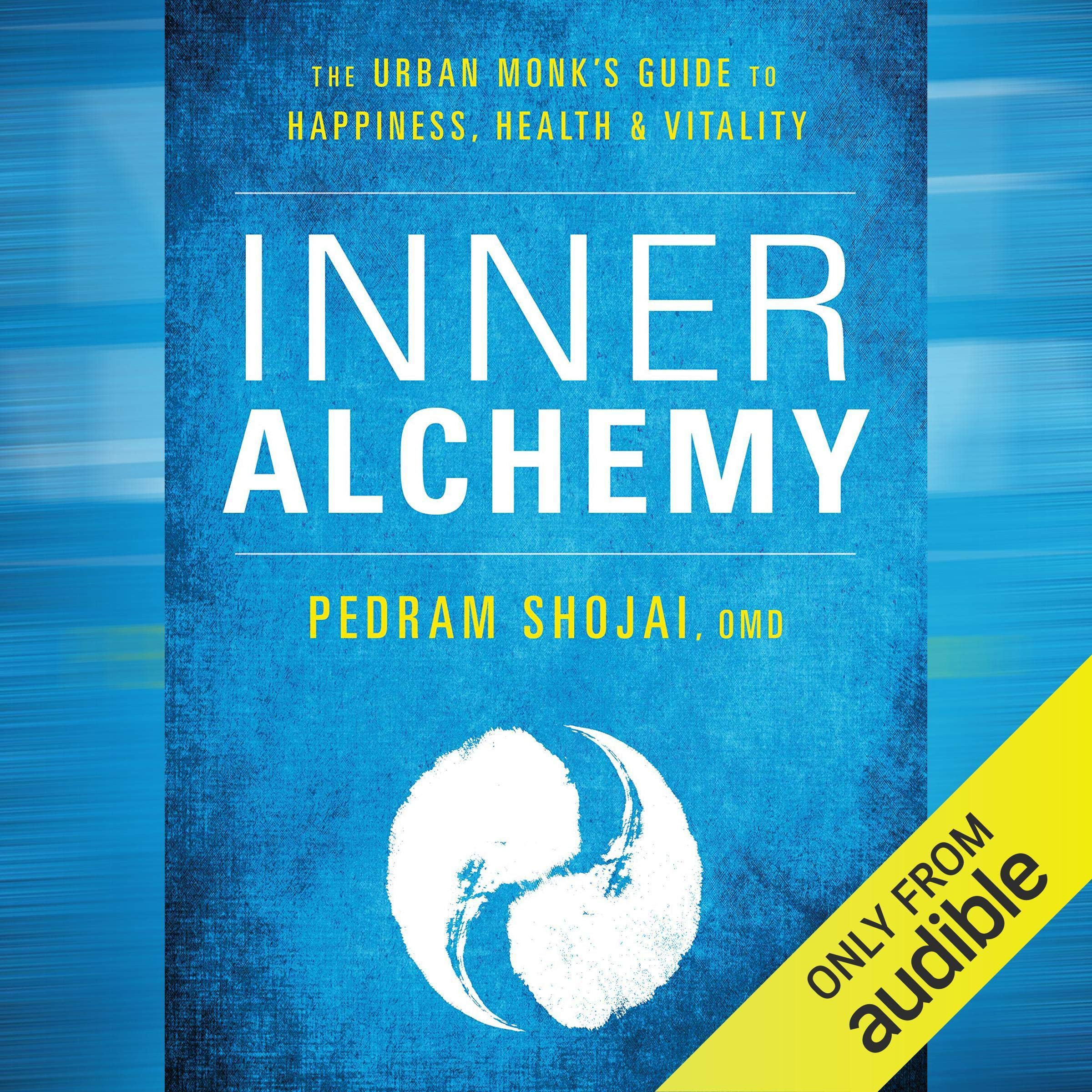 Inner Alchemy  The Urban Monk's Guide To Happiness Health And Vitality
