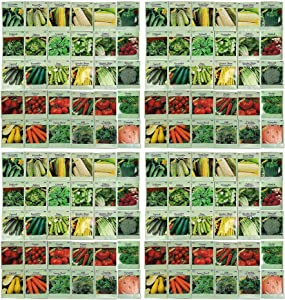 Set of 120 Vegetable and Herb Seeds - Semi Assorted - 100% Non-GMO & Heirloom - Great for Starting a Garden! High Germination Rate! (120)