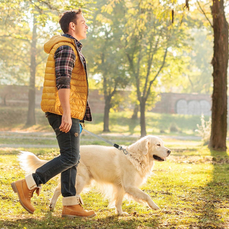 Pet Magasin - Cuerda para perros retráctil con un diseño ergonómico y retracción suave [Se incluye dispensador de desechos] - Es apta para sujetar a perros ...