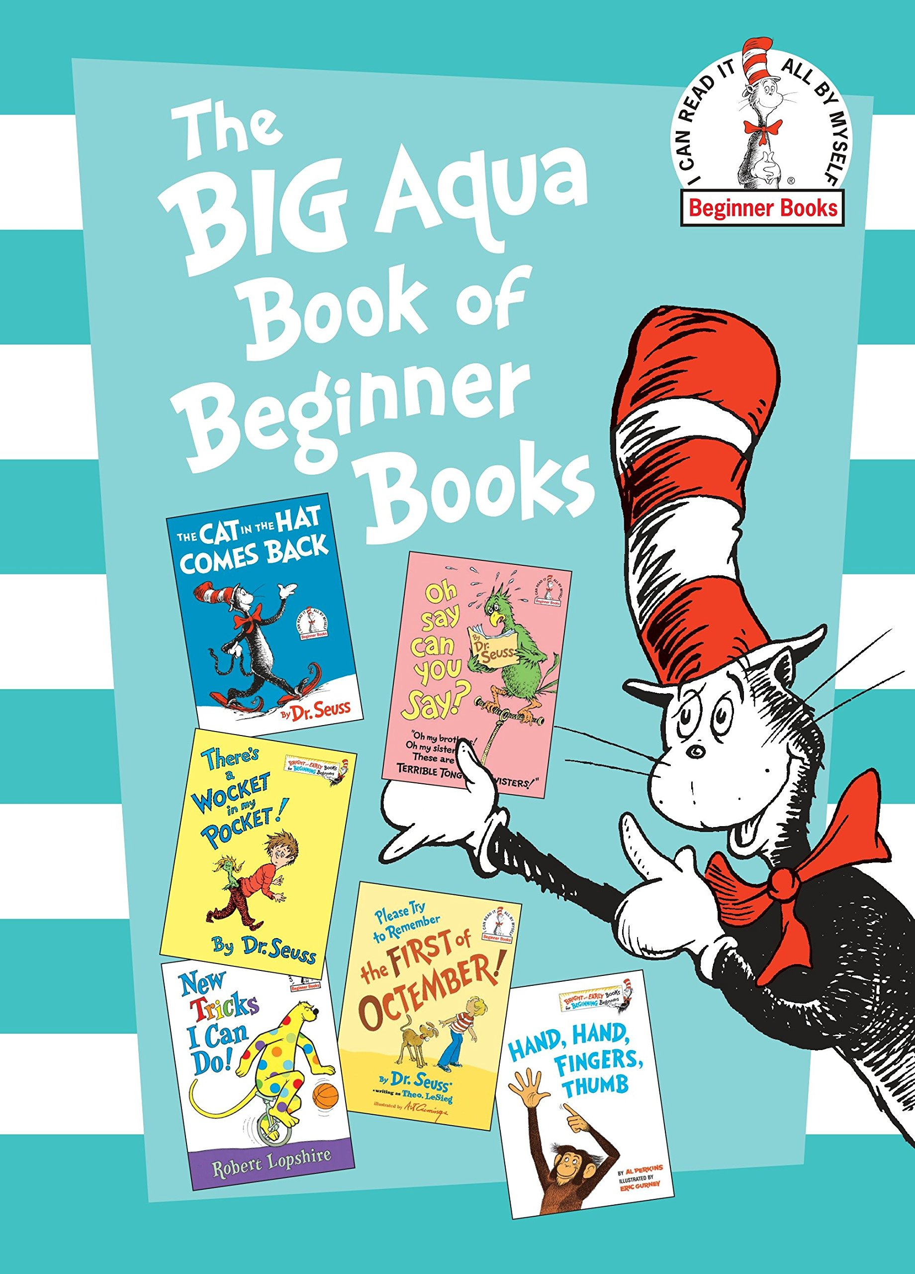 The Big Aqua Book of Beginner.