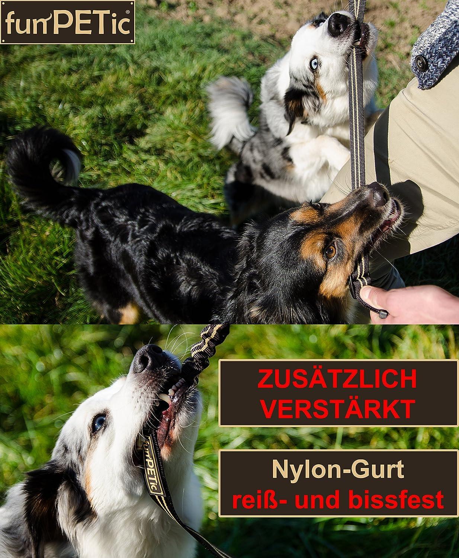 wpaacb Sicherheitsgurt Hunde Hundegurt F/ürs Auto Hundefesseln f/ür Auto Verstellbarer Sicherheitsgurt f/ür Hunde Hund Auto Sicherheitsgurt Black