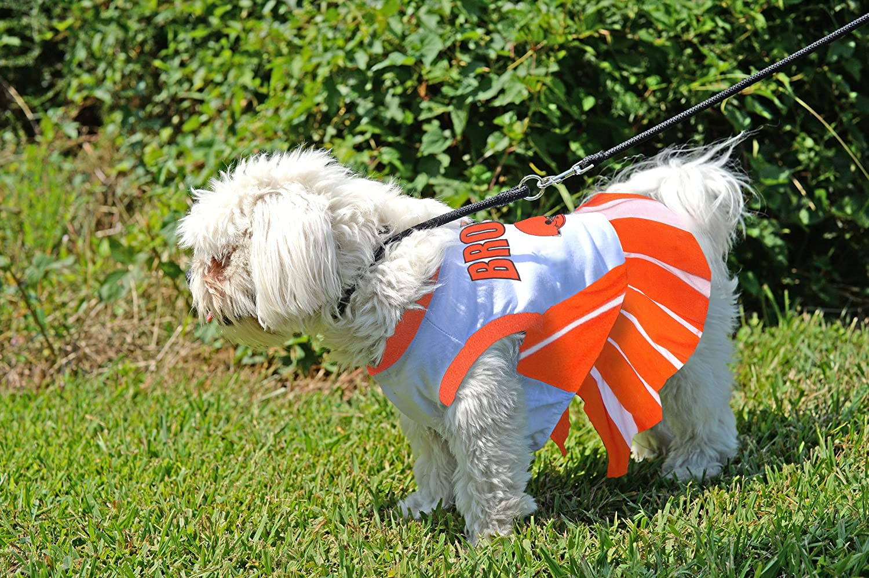 fcdc3f3ba Amazon.com   Cleveland Browns NFL Cheerleader Dress For Dogs - Size Medium    Pet Supplies