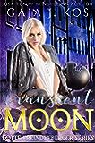 Transient Moon (Lotte Freundenberger Series Book 3)
