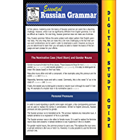 Russian Grammar ( Blokehead Easy Study Guide) (English Edition)