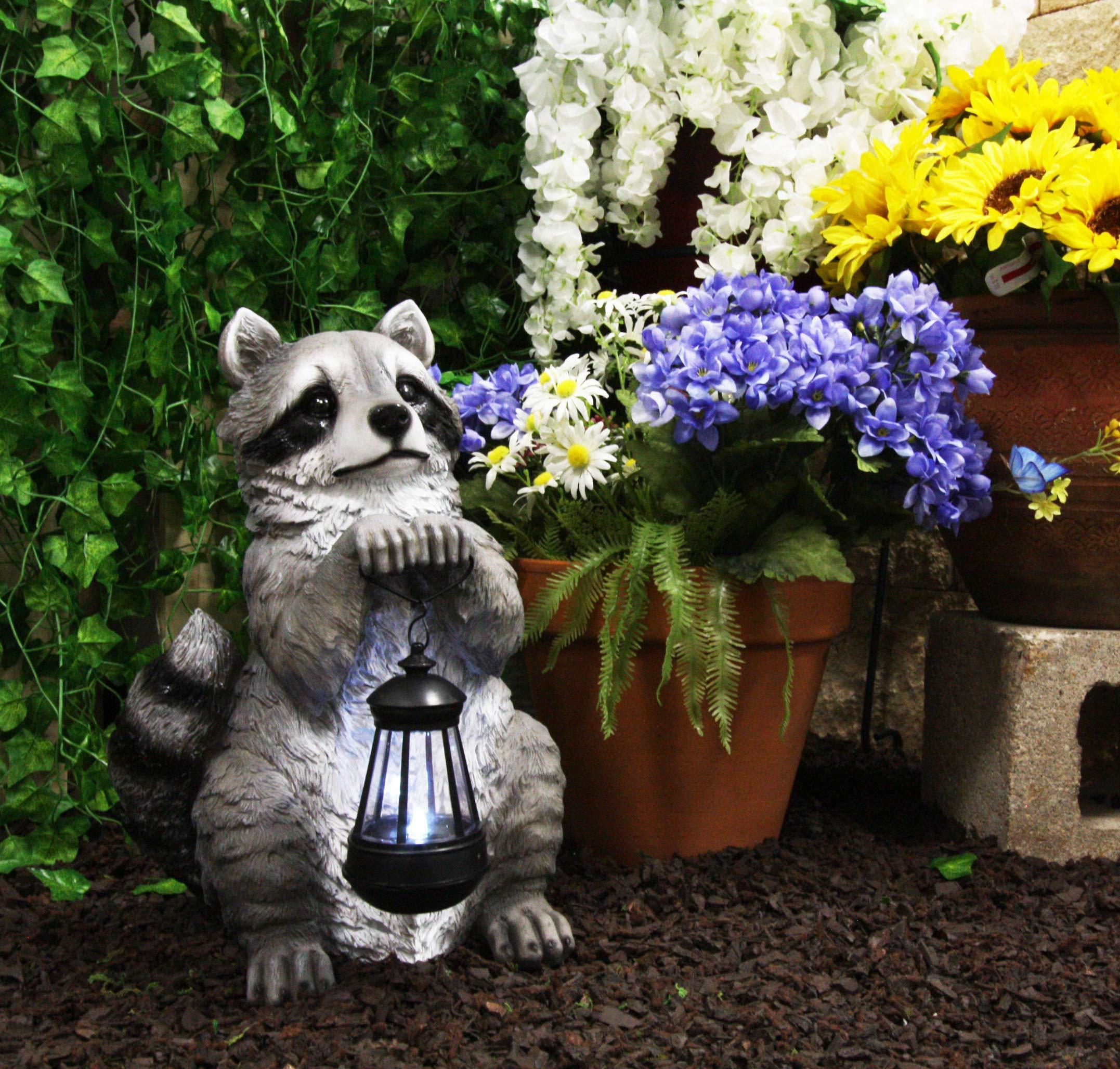 Ebros Night Bandit North American Raccoon Statue Holding Solar Powered Lantern LED Light Patio Decor Indoor Outdoor Raccoons Animal Sculpture Decorative by Ebros Gift