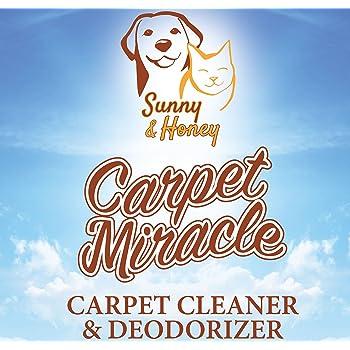 Amazon Com Sunny Amp Honey Carpet Miracle Carpet Cleaner