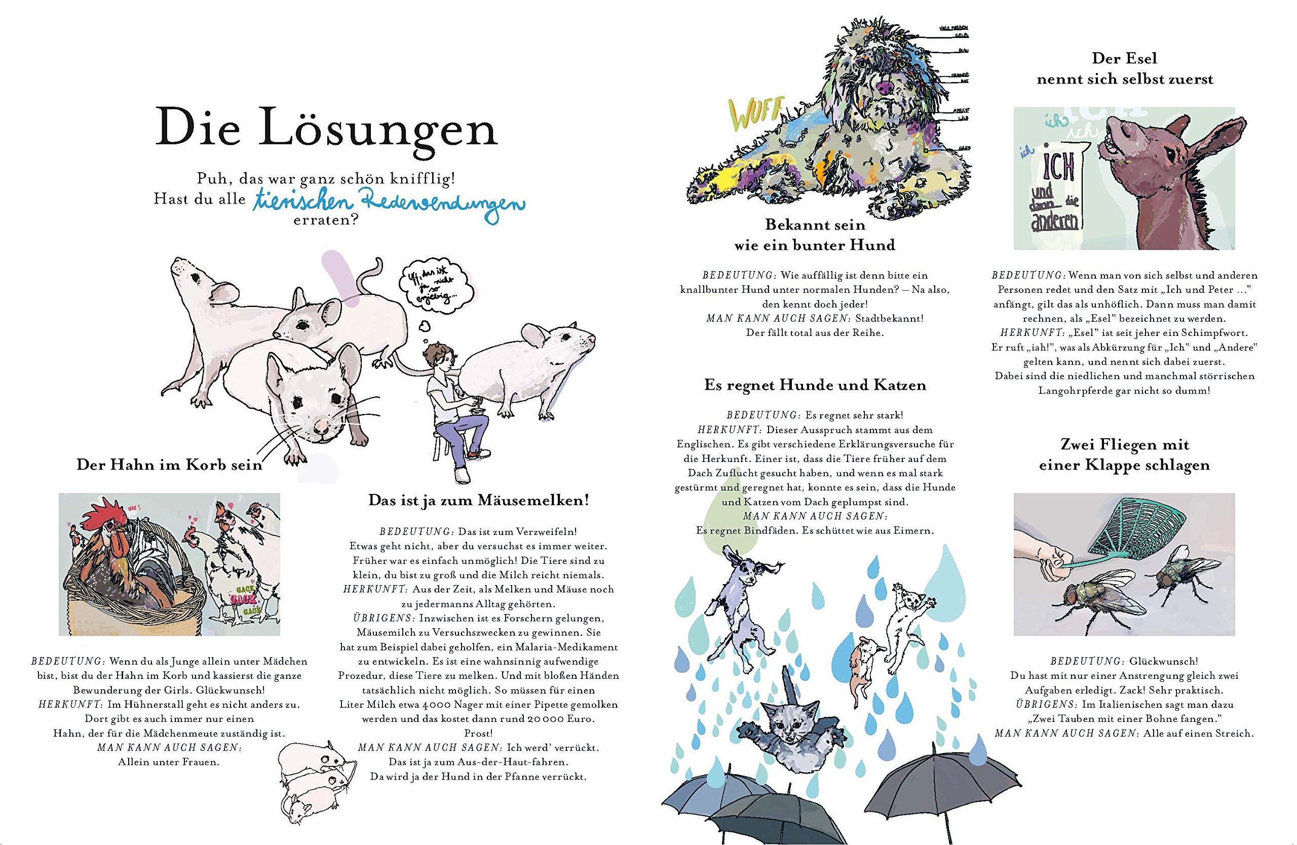 Wer Holt Die Kuh Vom Eis Das Rätselbuch Der Tierischen