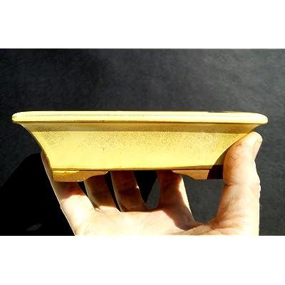Bonsai small pot - Cream color glaze coating - special - Made in Korea: Garden & Outdoor
