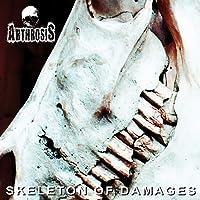 Skeleton of Damages