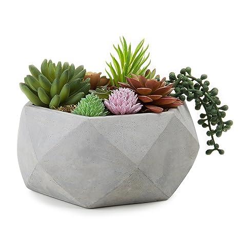 MyGift Bol à fleurs géométriques Ton ciment 20,3 cm: Amazon ...