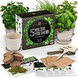 Indoor Herb Garden Starter Kit - 5 Herb Seeds Gardening Kit with Bamboo Planting Pots & Potting Soil - Heirloom & Non GMO - D
