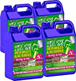 Pro-Kleen Ready to Use Simply Spray & Walk Away (4 x 5 Litres) Moss Killer & Green Mould & Algae Remover Cleaner for Patio, Fencing, Decking and more!
