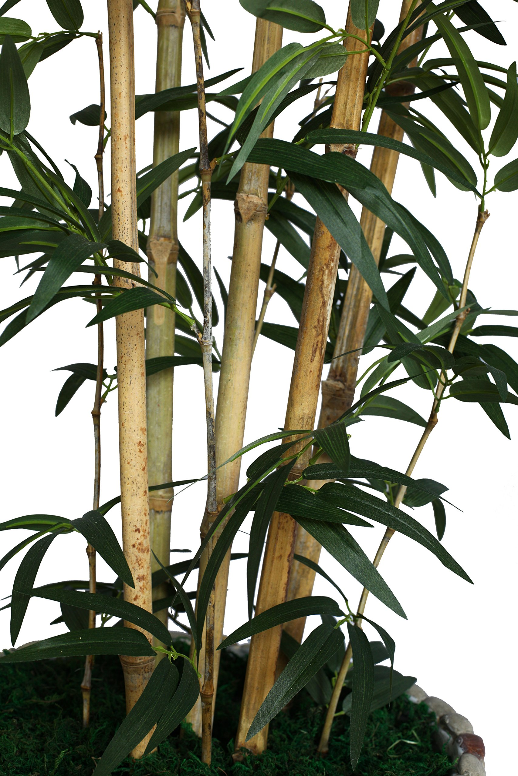 Laura Ashley VHX116209 86-Inch Natural Bamboo Tree in 16-Inch Fiber Stone Planter by Laura Ashley (Image #2)