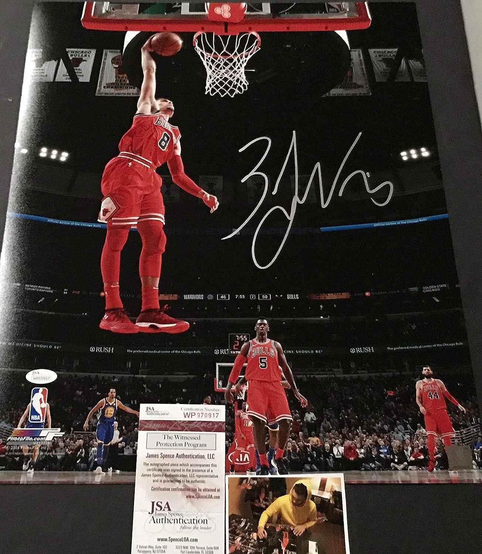 Zack LaVine Chicago Bulls Autographed Signed 16x20 JSA WITNESS COA SidsGraphs