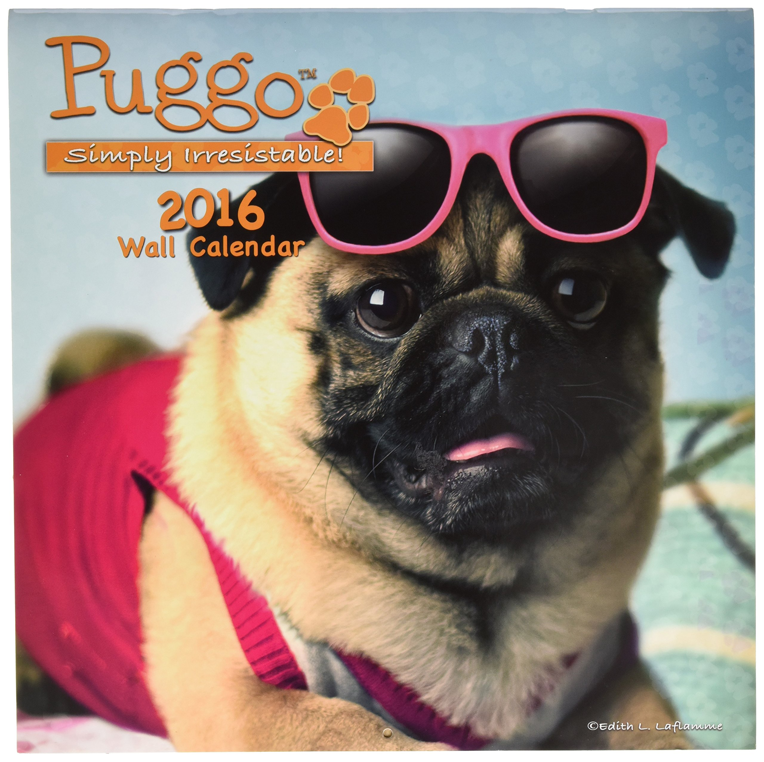 Turner Puggo 2016 Wall Calendar, 12 x 12 inches (8011977)