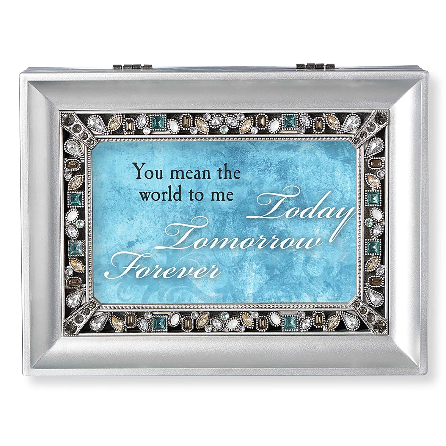 Roman You Mean The World Large Rectangle Silver Music Box S0056