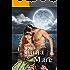 La luna e il mare (Romantic Pirates Vol. 2)