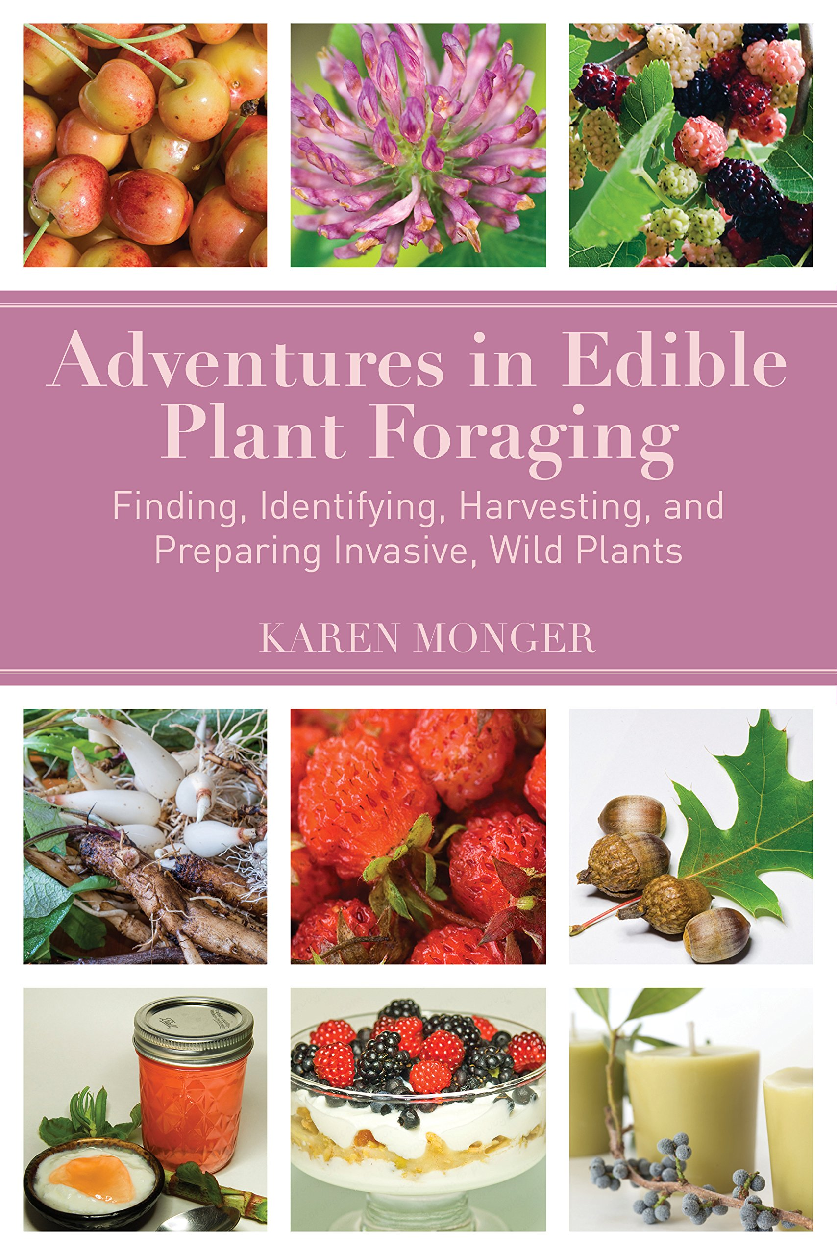 Adventures in Edible Plant Foraging: Finding, Identifying, Harvesting, and Preparing  Native and Invasive Wild Plants: Karen Monger: 9781634504072: ...
