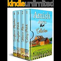 Amish Acres Boxed Set: 4 Amish Christian Romance