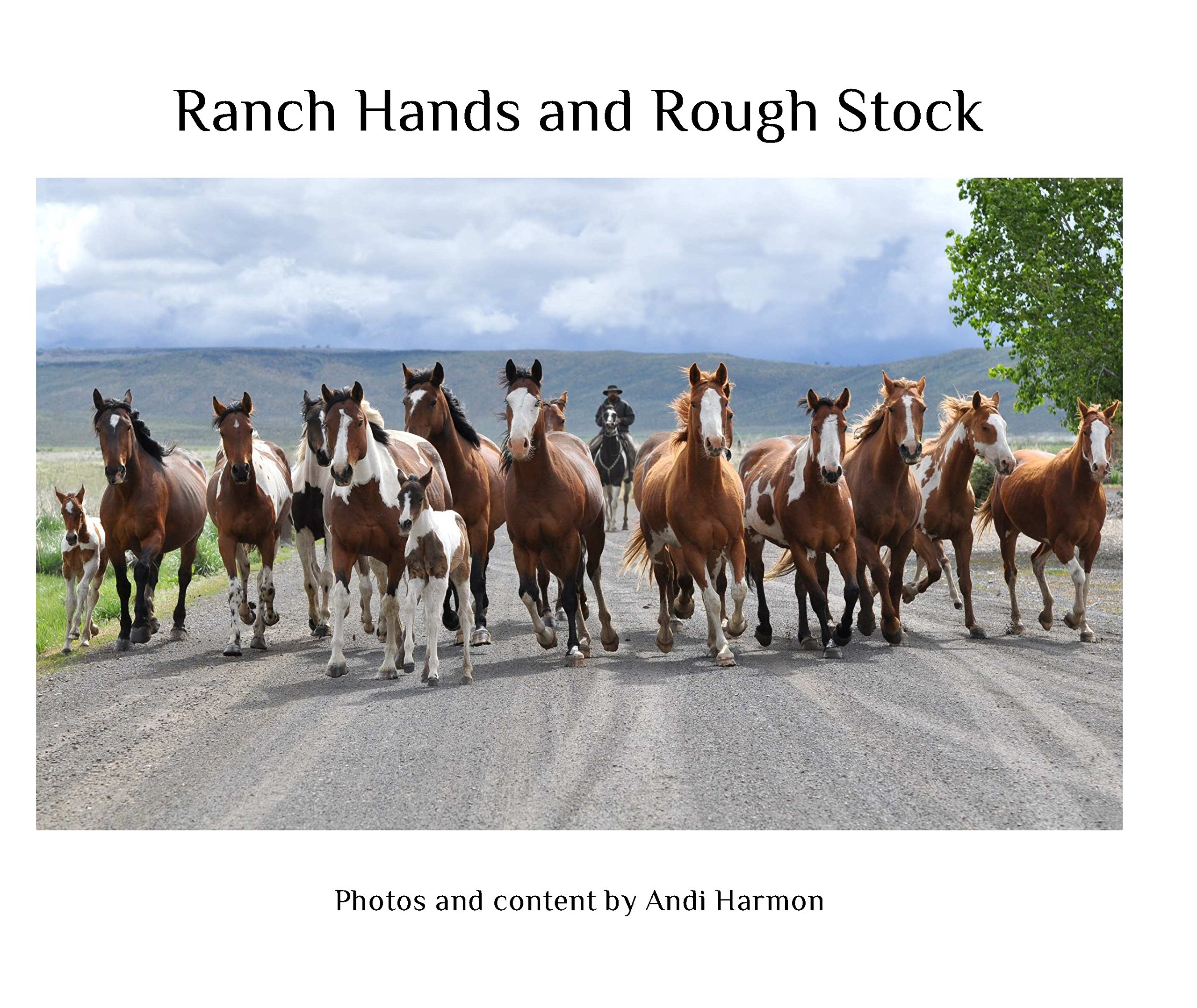 ranch hands and rough stock andi harmon 9781320237192 amazon com