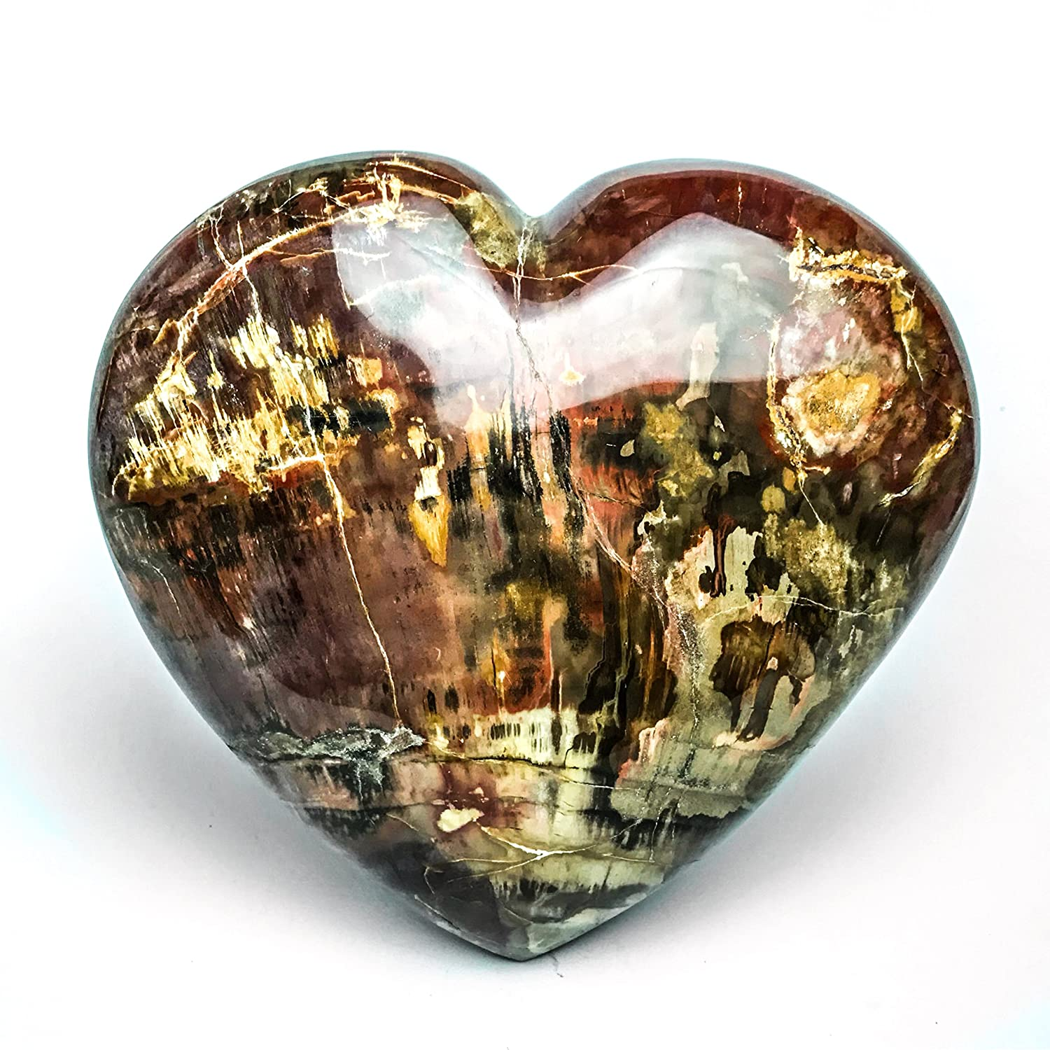 Astro Gallery Of Gems Petrified Wood Heart from Madagascar – pw-h1