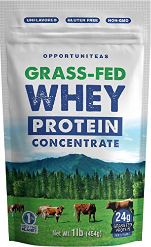 Grass Fed Whey Protein Concentrate – Premium Unflavored Protein Powder – Cold Processed Wisconsin Grass-Fed Protein for Any Smoothie, Shake, Drink, Recipe, or Food – Gluten Free Non-GMO – 1 Pound